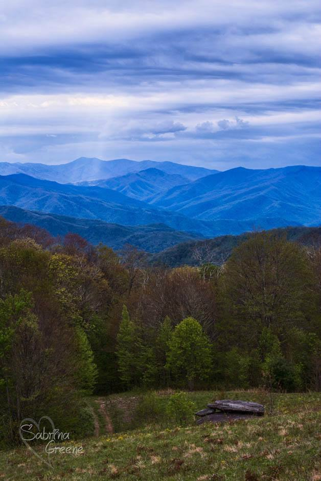 Western North Carolina Mountains by Sabrina L Greene